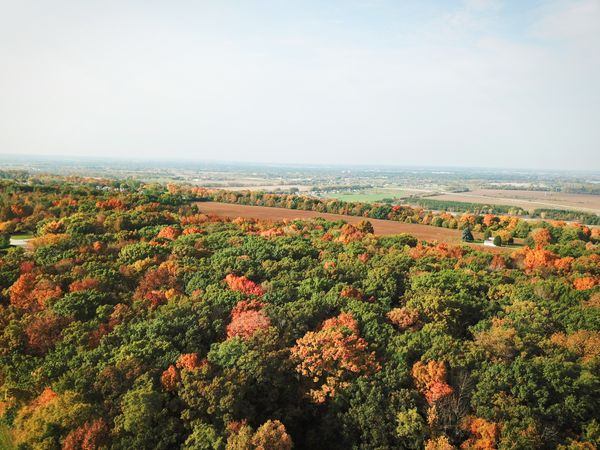 Countryside Fall Foliage