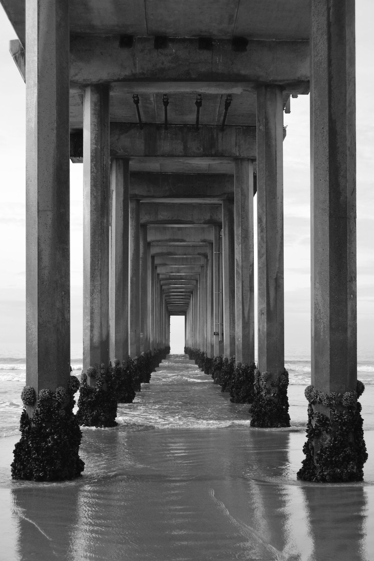 Disappearing Pier Act BW