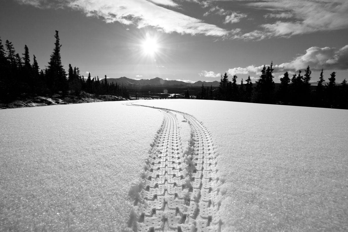 Alaska Fatbike Tire Track-1