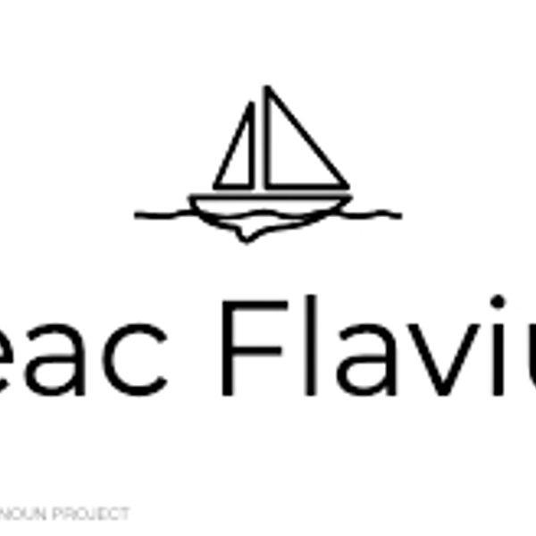 flaviustilneac99's featured image