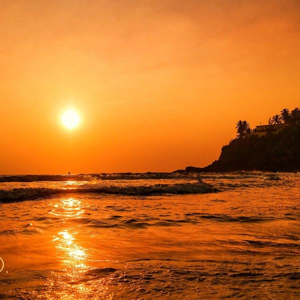 malavparmar's featured image