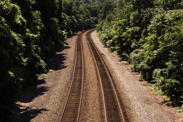 Train Tracks Surrounded by Lush Trees